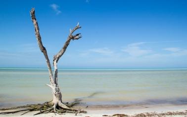Quintana Roo-19